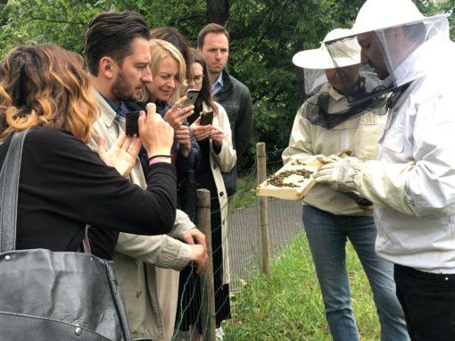 Dzięki pszczołom żyje się lepiej!